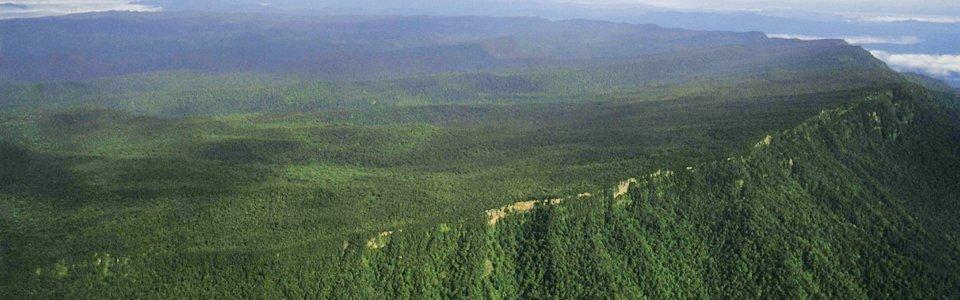Maliau Basin dari atas. Gambar: Maliaubasin.org